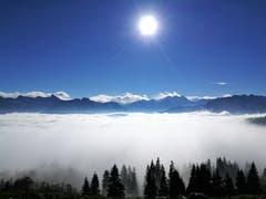 Tolle Fernsicht auf die Berge und das wunderbare Nebelmeer. (Bild: Urs Gutfleisch (Glaubenberg, 20. November 2018))