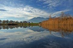 Naturschutzgebiet Schollenriet. (Bild: Toni Sieber)
