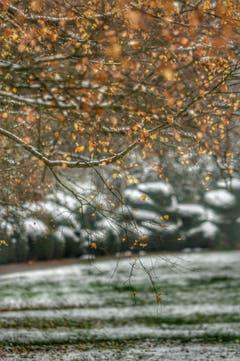 Herbst und Winter vereint. (Bild: Katharina Nagy)