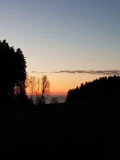 Eine Abendstimmung in Andwil. (Bild: Reto Schlegel)