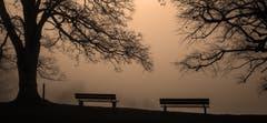 Nebelbänke auf dem Freudenberg. (Bild: Franziska Hörler)
