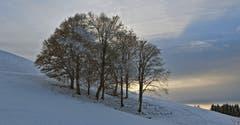 Erste Schneespuren am Kaienspitz! (Bild: Walter Schmidt)