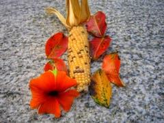 Herbstimpressionen in Montlingen. (Bild: Toni Sieber)