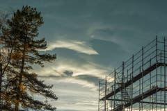 In den Himmel wachsen. (Bild: Hans-Jörg Nüesch)