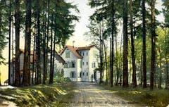Das Restaurant auf Peter und Paul vor 1911. Der gleichnamige Wildpark wurde hier am 1. Mai 1892 eröffnet. National bekannt wurde er nach 1900 durch seine Anstrengungen zur Wiederansiedlung des Steinbocks in den Schweizer Alpen.