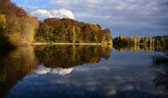 Auch in Deutschland zeigt sich ein prächtiger Herbst: Königswaldsee in Offenburg. (Bild: Alfred Herzog (Offenburg, 2. November 2018))