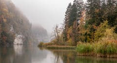 Wichelsee mit Nebel, nicht so «farbig», aber eindrücklich. (Bild: Erich Heiniger (5. November 2018))