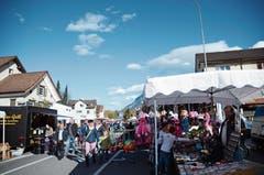 90 Stände und das gute Wetter lockten die Gäste an den Trübbächler Jahrmarkt. (Bild: Bilder: Jessica Nigg)