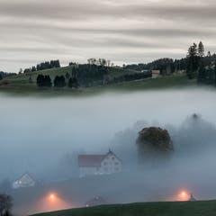 Herbstlicher Abendnebel über Speicher. (Bild: Hans-Jörg Nüesch)