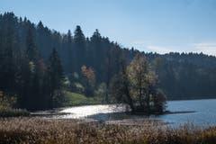Herbstliche Föhnstimmung am Wenigerweier. (Leserbild: Franz Häusler - 26. Oktober 2018)