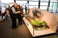 Blick in die Ausstellung. (Bild: PD)