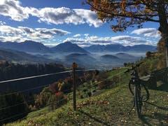 Biken im November: herrlich! (Bild: Toni Sieber)
