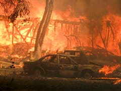 Auch Teile der Küstenstadt Malibu mussten evakuiert werden - betroffen waren auch Hollywoodstars wie Alyssa Milano. (Bild: KEYSTONE/FR170512 AP/RINGO H.W. CHIU)