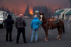 Hillery Johnson (rechts) verlor ihr gesamtes Hab und Gut ausser ihr Pferd Augie. (EPA/PETER DASILVA)