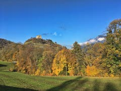 Die Burg Wartau in Gretschins. Sie wurde um 1225 errichtet. (Bild: Toni Sieber)