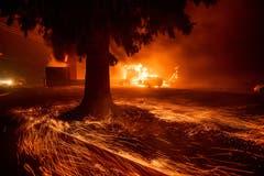 """Flammen fressen sich durch ein Restaurant der Kette """"Kentucky Fried Chicken"""" in Paradise. (AP Photo/Noah Berger)"""