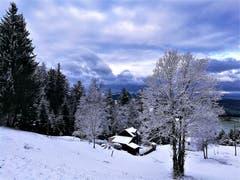 Herrliche winterliche Impressionen mit Aufhellungen am Himmel. (Bild: Urs Gutfleisch (Eigenthal, 10. Dezember 2018))