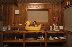 «Wir waren mit dem Auto in Australien unterwegs, es war ungewöhnlich heiss. Unsere Tochter Genie nimmt hier ein Bad in ihrer Plastikente, auf dem Spülbecken.» (Bild: National Geographic/Todd Kennedy)