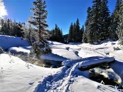 Wunderbare Winterlandschaft im Glaubenberg. (Bild: Urs Gutfleisch (Glaubenberg, 12. Dezember 2018))