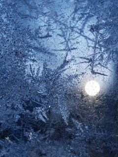 Eiskristalle vor dem Sonnenaufgang. (Bild: Reto Schlegel)
