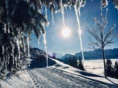 Winter auf der Rigi (Bild: Markus Brülhart (Rigi, 13. Dezember 2018))