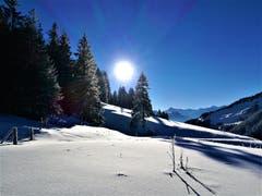 Strahlender Sonnenschein erreicht die schneebedeckte Winterlandschaft. (Bild: Urs Gutfleisch (Glaubenberg, 12. Dezember 2018))