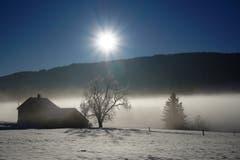 Wintermorgen in Gais (Bild: Toni Sieber)