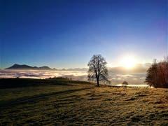 Wunderbarer Sonnenaufgang mit dem Nebelmeer und der herrlichen Aussicht auf die Berge. (Bild: Urs Gutfleisch (Sonnenberg, 18. Dezember 2018))