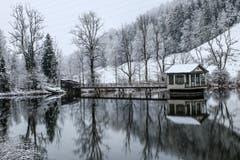 Der Wenigerweiher in St.Gallen im ersten Schnee (Bild: Willy Zimmermann)