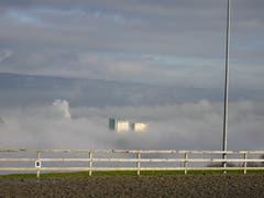 Die Zwicky-Türme haben sich einen Sonnenplatz erkämpft. (Bild: Stephan Lendi)