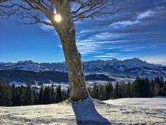 Der Oberer Gäbris im kommenden Winterkleid. (Bild: Toni Sieber)