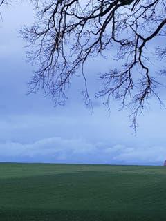 Ruhe ist eingekehrt...aufgenommen in Sitterdorf. (Bild: Reto Schlegel)