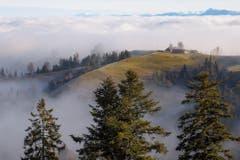 Weihnachtsmorgen über dem Nebel. (Bild: Priska Ziswiler-Heller (Ahornalp, 25. Dezember 2018))