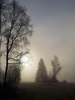 Sonne hinter dem Nebel ausserhalb Sitterdorf. (Bild: Reto Schlegel)