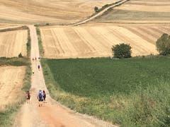Malerische Landschaften prägen den Jakobsweg in Spanien.