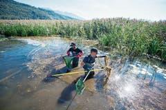 Forscherfreude: Um die Artenvielfalt untersuchen zu können, werden am Alpnachersee von Mitarbeitern von Aqua Bios Fische für eine Zählung aus dem Wasser geholt. (Bild: Keystone/Urs Flüeler (11. September 2018))