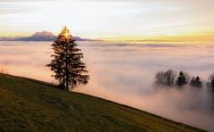 Sonnenuntergang auf dem Zugerberg (Bild: Daniel Hegglin (Zugerberg, 26. Dezember 2018))