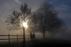Morgenspaziergang an der Nebelgrenze. (Bild: André Egli (Grosswangen, 28. Dezember 2018))
