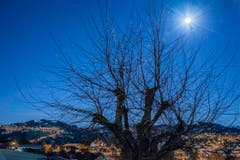 Helle Mondnacht über Speicher. (Bild Hans-Jörg Nüesch)