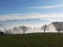 Steigender Nebel auf dem Tannenberg (Bild: Irene Weibel)