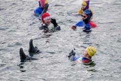 Das scheint ja gemütlich zu sein: Am Silvester-Schwimmen in der Reuss. (Bild: KEYSTONE/Urs Flüeler; Luzern, 31. Dezember 2018)