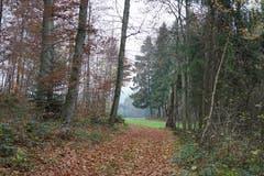 Der Ausgang aus dem Waldschloss.