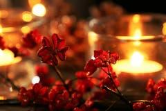 Kerzenlicht lässt das Pfaffenhütchen wie einen Stern erleuchten (Bild: Irene Wanner (Schötz, 4. Dezember 2018))