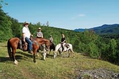 Beim Ausritt in den geschützten Wäldern des Velebit-Gebirges geniesst man intime Momente in der Natur.