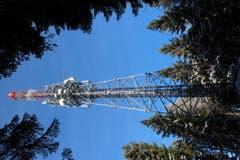 Natur und Technik, Antenne im Spatzwald, auf dem Buttenberg. (Bild: Josef Habermacher)