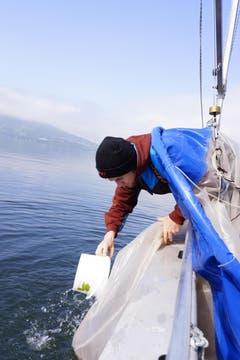 Der Zivildienstler Elias Häller reinigt ein Planktonnetz. (Bild: Raphael Biermayr / Neue ZZ)
