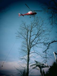Aufzug von Hilfskabeln für die neue Seilbahn (Seebodenalp - Küssnacht a. Rigi), per Helikopter. (Bild: Michael Flückiger)