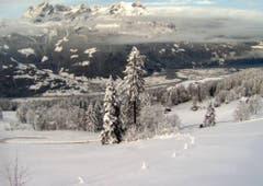 Winter-Wunderland bei der Luftseilbahn Schattdorf-Haldi (Bild: Webcam)