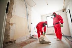 Die Spezialisten bei den heiklen Arbeiten. (Bild: Boris Bürgisser/ Neue LZ)