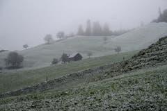 Eine feine Schicht Schnee bedeckt die Hügel auf rund 500m über Meer oberhalb von Stans. (Bild: Keystone)